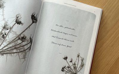 """""""Alles, was Sie schon immer übers Gärtnern wissen wollten"""" von Gabriella Pape"""